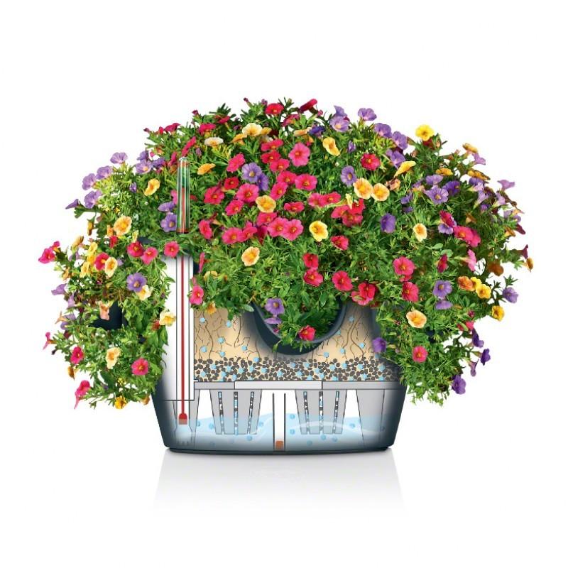 Кашпо цветы