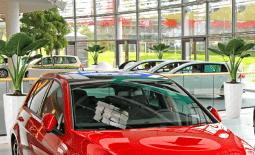 Озеленение автосалона