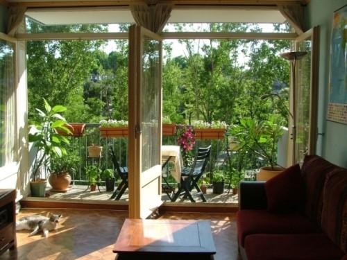 Пример озеленения дома\квартиры