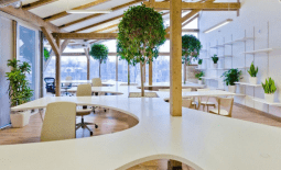 Озеленение офиса
