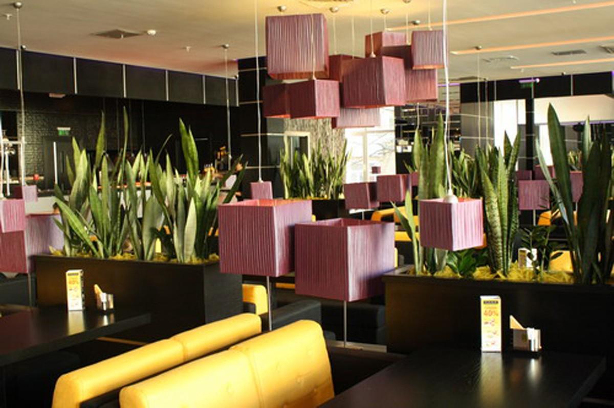 Пример озеленения ресторана