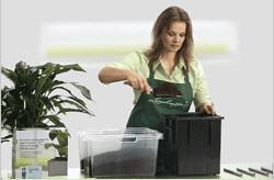 Услуга по пересадке комнатных растений в кашпо Lechuza