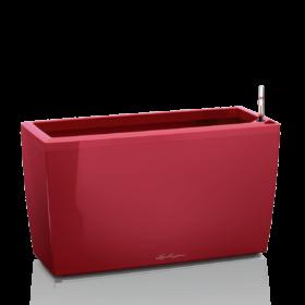 CARARO Ярко-красный блестящий
