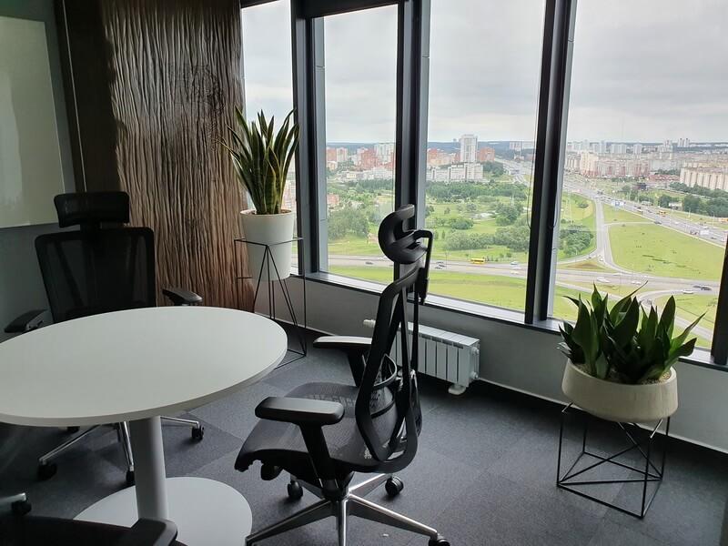 Озеленение офиса пример 10