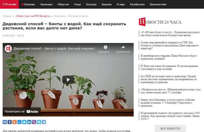 скриншот iplants.by в передаче Новое утро на РТР-Беларусь