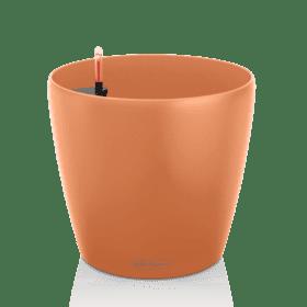 CLASSICO-Color-18-mango-slush-280x280