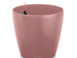 CLASSICO-Color-18-pearl-rose-280x280